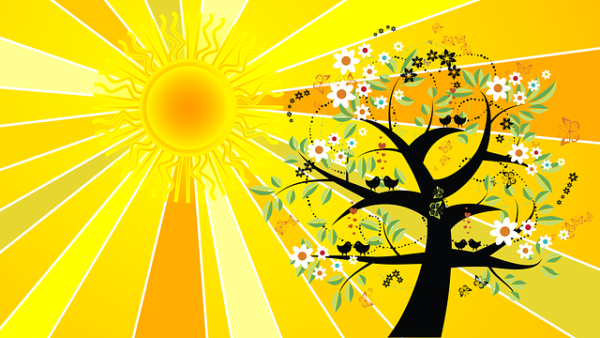 Energéticienne et thérapeute certifiée en hypnose régressive